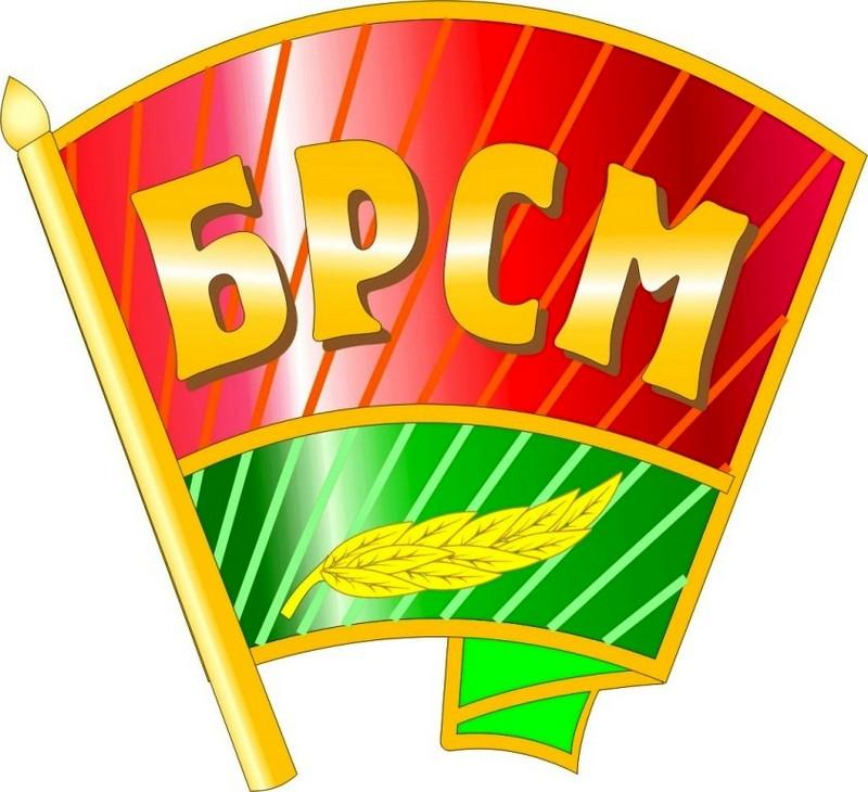 значок БРСМ